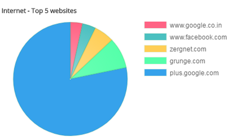 Top websites accessed by employees